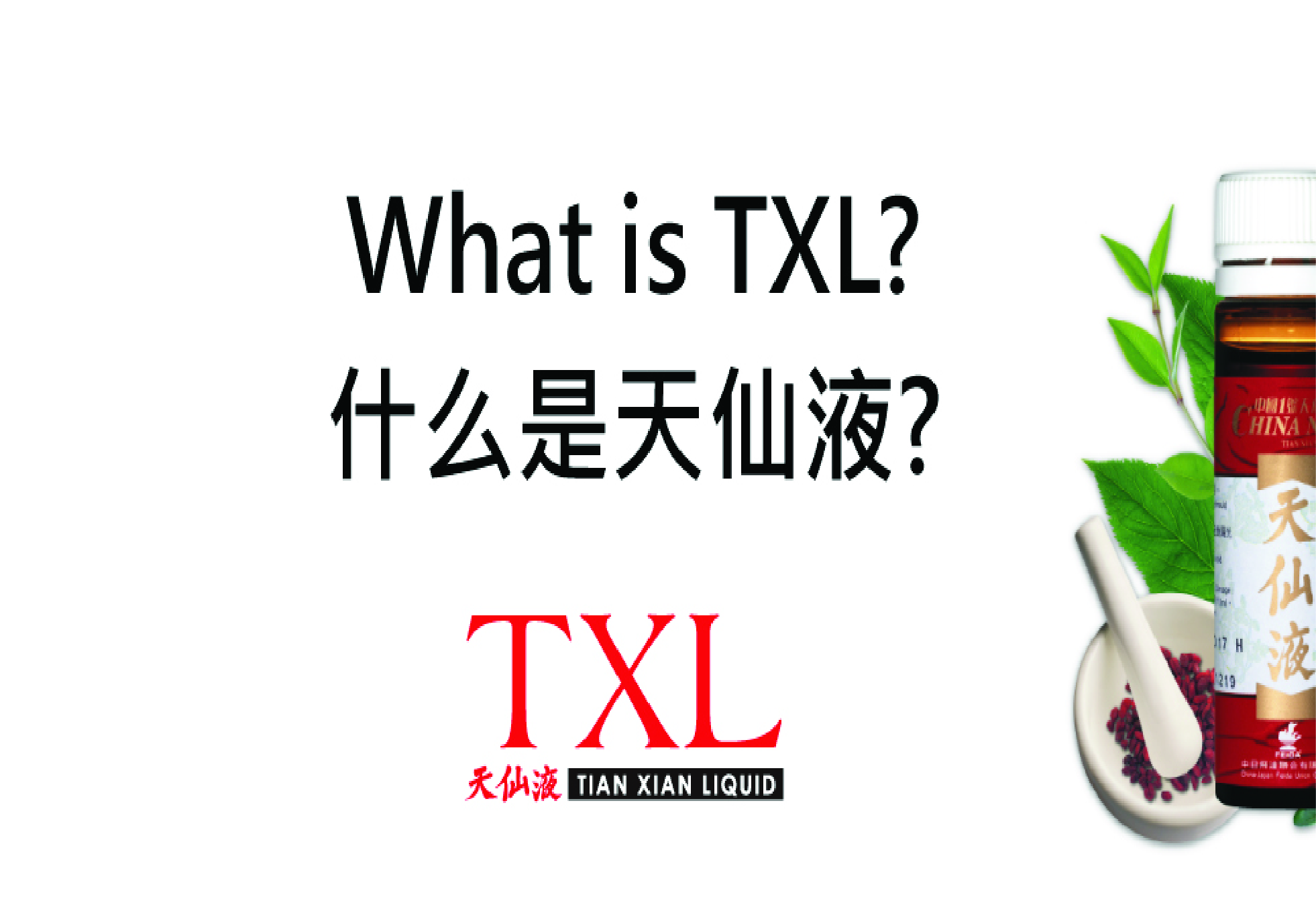 What is TXL?