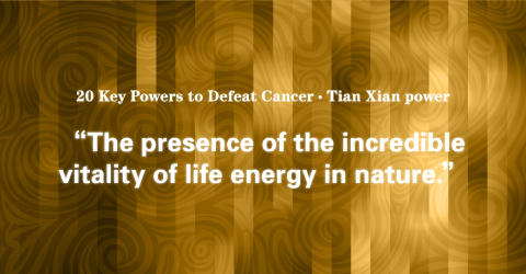 06 Tian Xian power: Validation Experiments