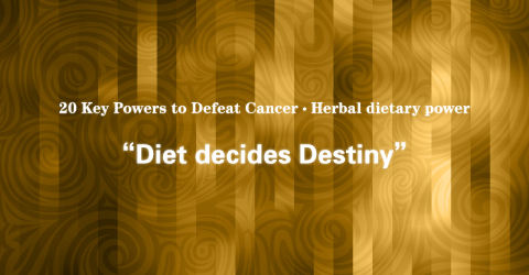 08 Herbal Dietary Power: Medicine and Food From a Same Source