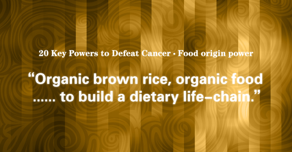 12 Food Origin Power: Dietary Life-Chain